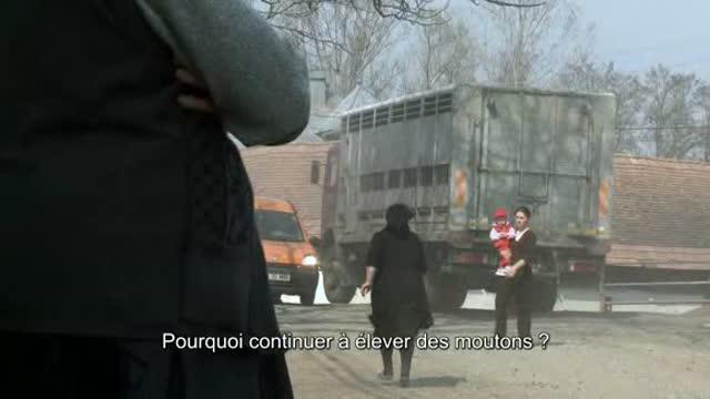 Hors des sentiers battus : Ingo Holub
