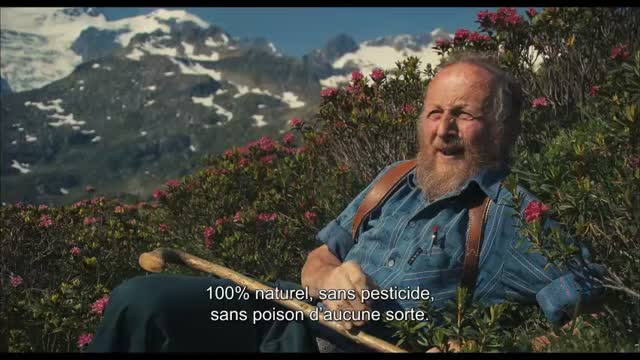 Des abeilles et des hommes : Jörg Jeshel