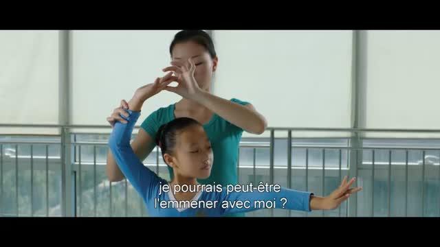 Le Promeneur d'Oiseau : Wang Jian Jun