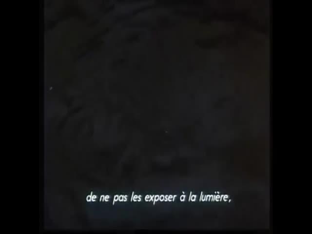 Bande-annonce VOST : Gremlins 2
