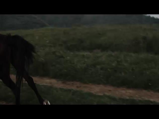 Le Sang des Templiers 2 - La Rivière de Sang : Tom Rhys Harries