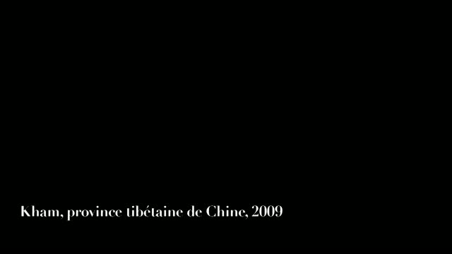 Le Rappel des Oiseaux : Mikael Kandelman