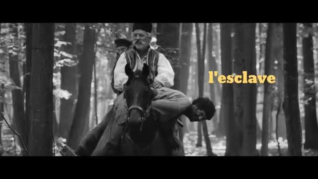 Aferim ! : Domnica Bodogan
