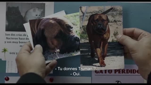 Bande-annonce VOST : Truman