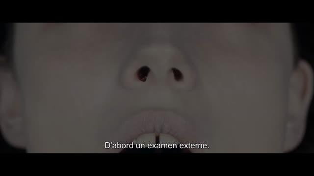 Le fantôme d'henri langlois : Fabrice Radenac