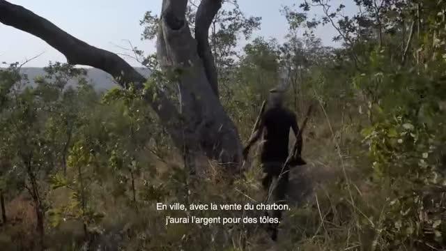 Bande-annonce VOST : Makala