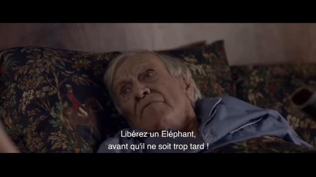 Un Cheval nommé Eléphant : Patricia ERCOLE