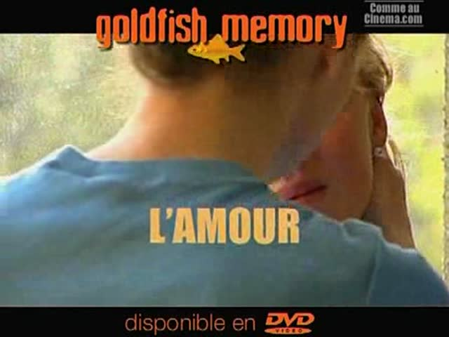 Bande Annonce : Goldfish Memory
