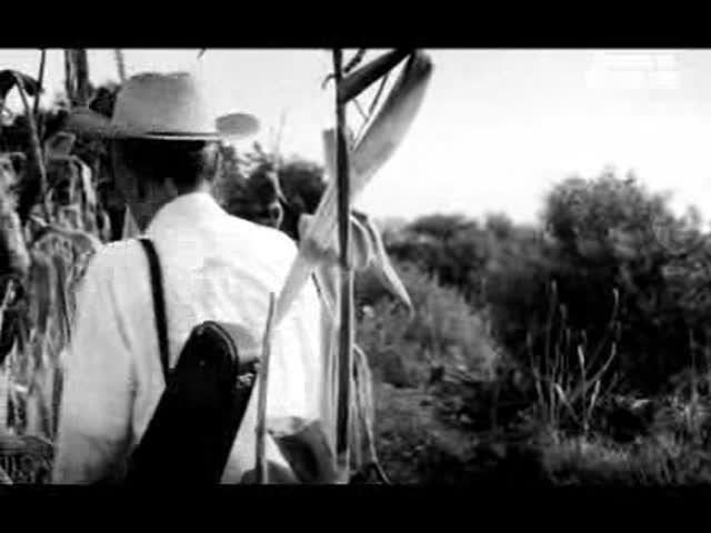 Le Violon : Hugo Rodriguez