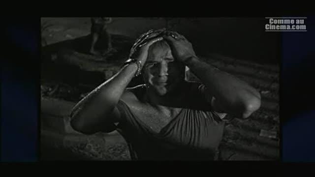 Extrait 1 : Brando