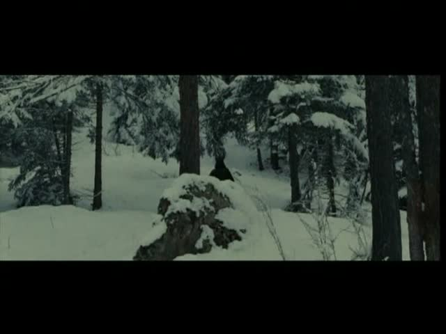 Bande Annonce : Sommeil Blanc